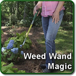 The Weed Wand Magic Herbicide Applicator
