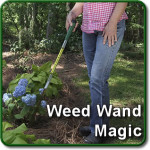 Weed Wand Magic